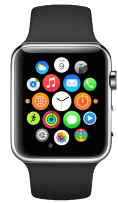 What to make of the Apple Watch